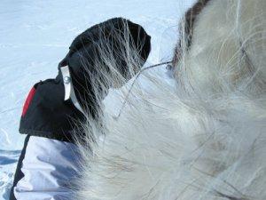 The Abominable Snow Mitt!