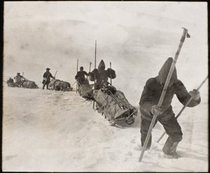 Critical sled research and design. Nansen's team approaching the Greenland ice sheet.